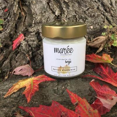 Chandelle du mois - Épices d'automnes